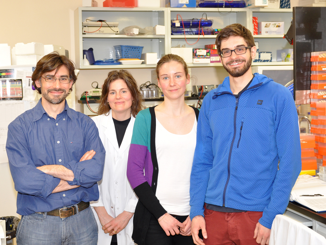 De gauche à droite: Javier M. Di Noia, Astrid Zahn, Ludivine Litzler, Stephen P. Methot