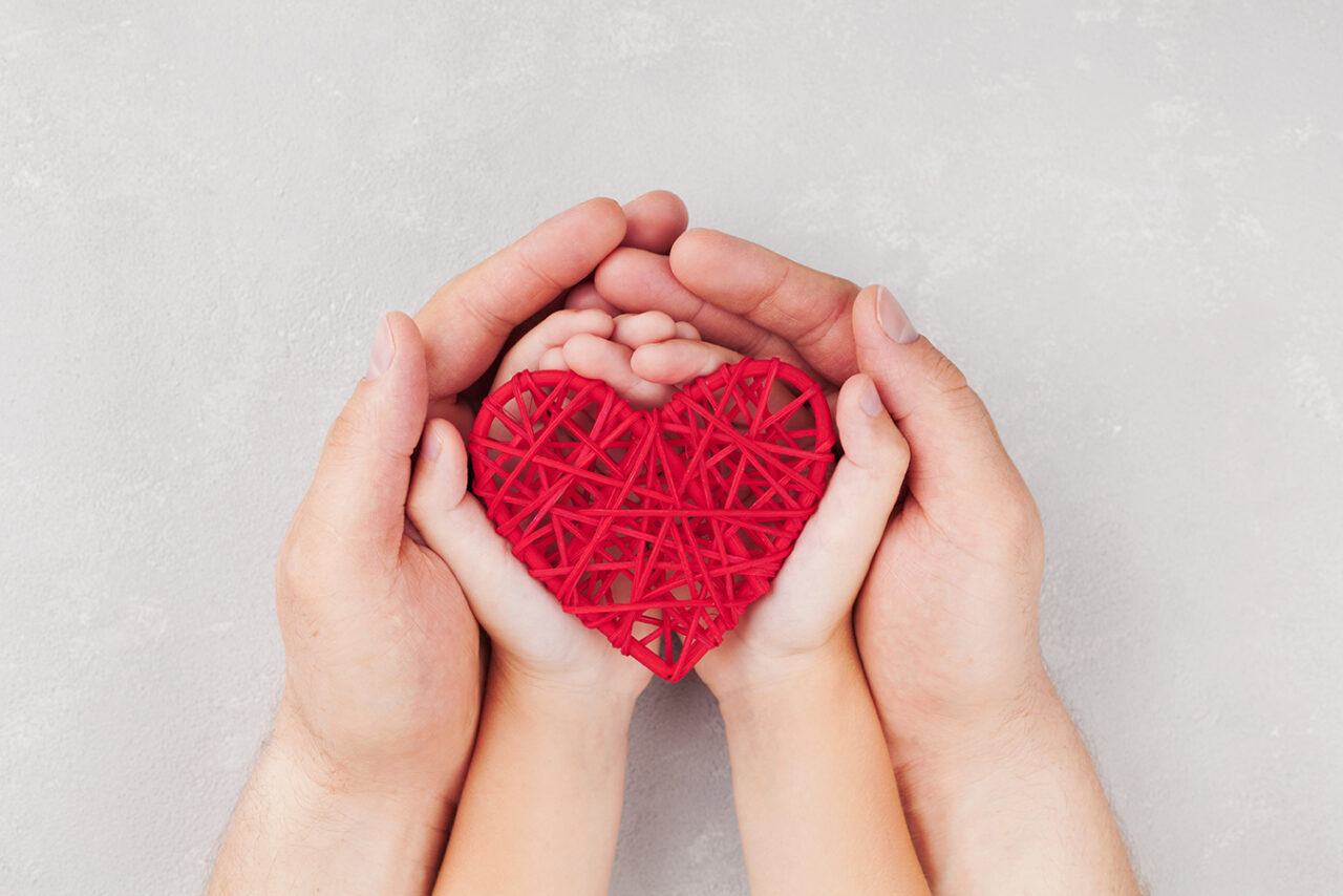 Adult and child holding red heart in hands top view. Family rela